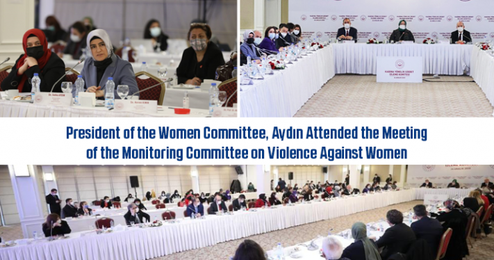 President of the Women Committee, Aydın Attended the Meeting of the Monitoring Committee on Violence Against Women